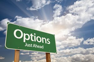 One on One Options Coaching - Five Hours with Ricki